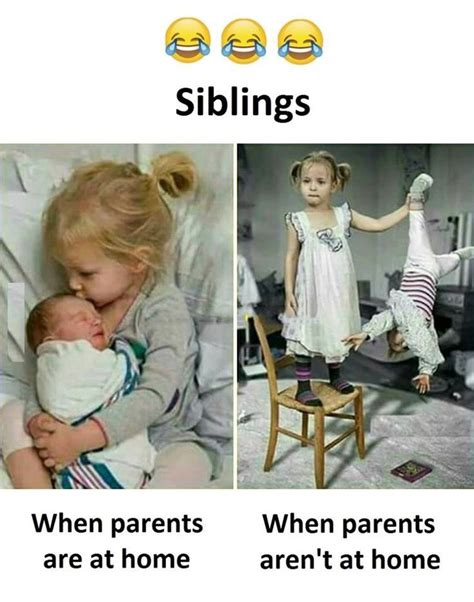 sibling memes best 25 sibling humor ideas on siblings