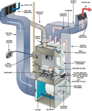 my old dog keeps peeing in the house furnace troubleshooting bob vila