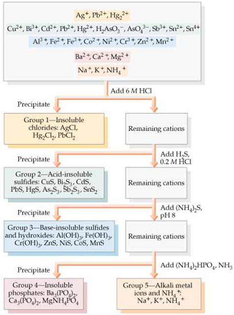 qualitative analysis lab flowchart qualitative analysis of 1 cations lab answers