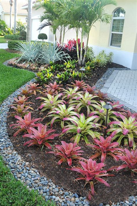 17 best images about south florida landscaping on pinterest gardens tropical colors and agaves