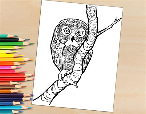 trees more coloring book books coloring book page owl in a tree coloring page for