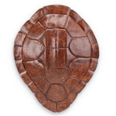 Shell Wall Decor by Buy Resin Turtle Shell Wall Hanging Decor In Burgundy