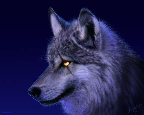 imagenes surrealistas de lobos imagenes de lobos taringa