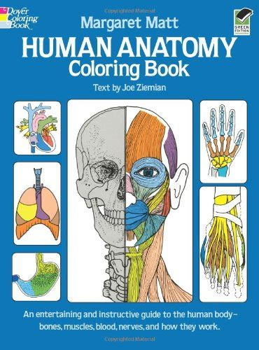 anatomy book with cadaver pictures anatomy books learning aids for living