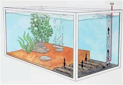 aquarium design international ltd aquarium filter designs undergravel filters howstuffworks