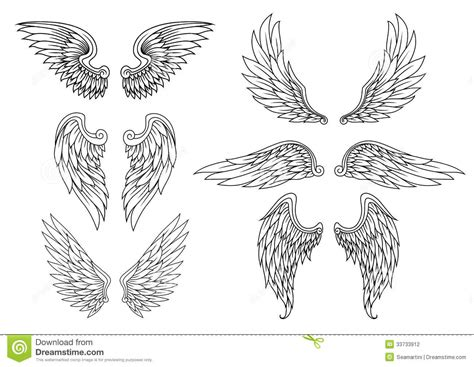 heraldic wings set stock vector image of icon falcon