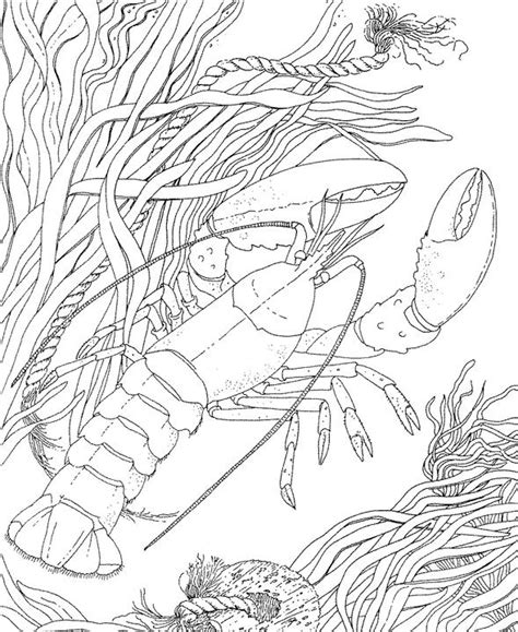 seascape ocean coloring page