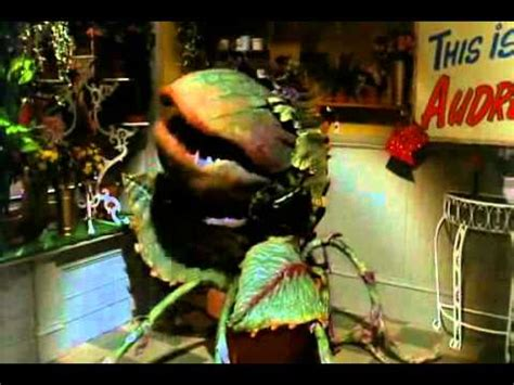 little shop of horrors feed me youtube