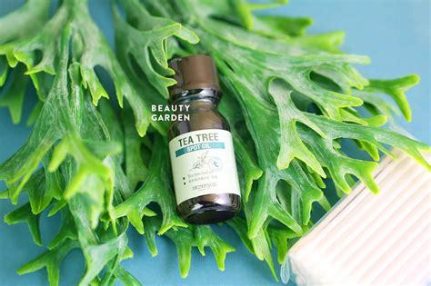 Dijamin Skinfood Tea Tree Spot Kit tinh dầu trị mụn hiệu quả skinfood tea tree spot