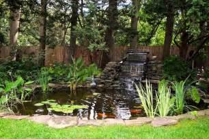backyard koi pond with waterfall home design examples