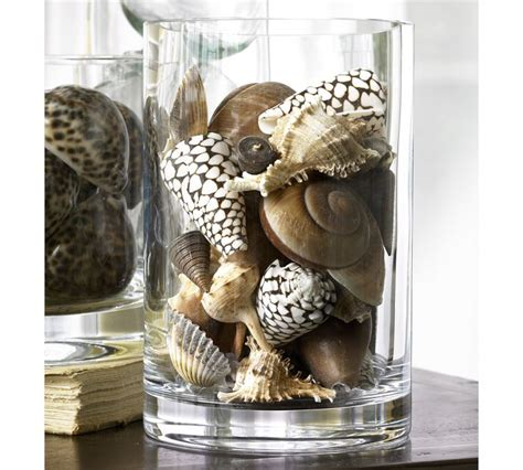 Shell Decorations by Elements As Brilliant And Pricy Vase Filler Ideas