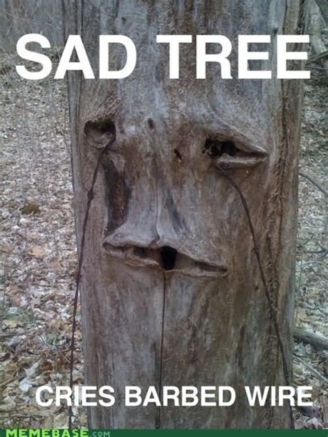 Tree Trunks Meme - 30 most funniest tree meme pictures and photos