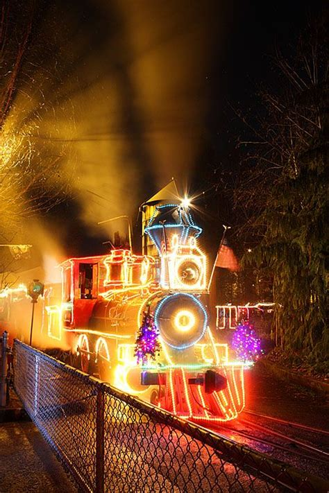 Pin By Jeanette Bryant On Portland Pinterest Oregon Zoo Zoo Lights
