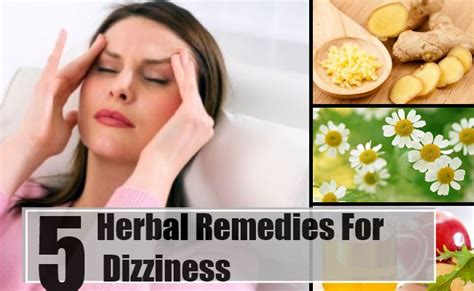 top 5 herbal remedies for dizziness treatments cure