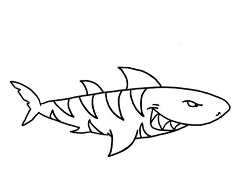 tiger shark coloring page shark cartoon coloring pictures coloring pages