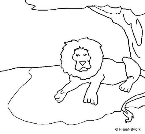 dibujos para colorear de leones actividades infantiles y dibujo de rey le 243 n para colorear dibujos net