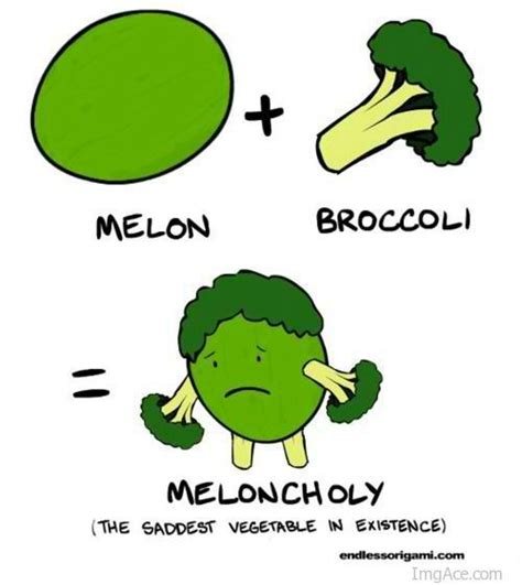 Vegetable Meme - 16 best images about vegetable memes on pinterest funny