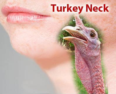 pics of turkey neck 1000 images about turkey neck on pinterest face yoga
