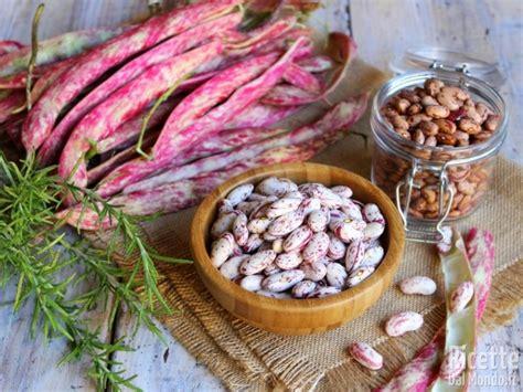 cucinare fagioli borlotti come pulire e cuocere i fagioli borlotti freschi