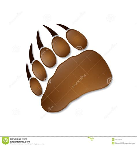 bear footprint stock vector illustration of step claws