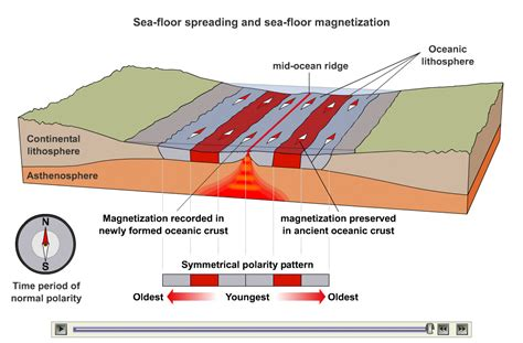 What Does Sea Floor Spreading by Plate Tectonics 6 The Front Seat