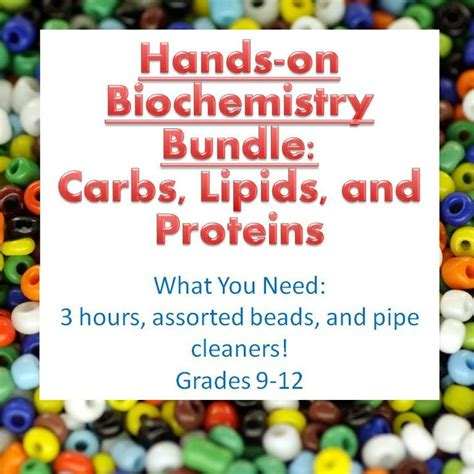 carbohydrates grade 9 biochemistry activity bundle with four macromolecules for