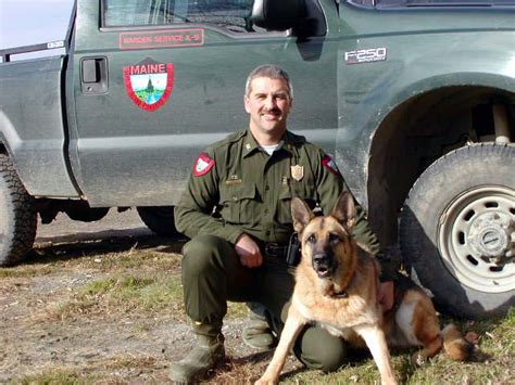rescue dogs maine a call to duty german shepherd rescue of new