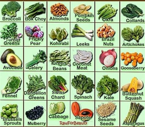 protein rich vegetables osteoporosis prevention diet and nutrition tips for