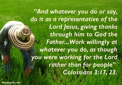 colossians 33 verse by verse bible commentary 17 best images about colossians on pinterest christ