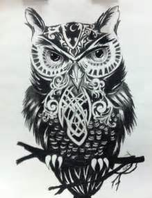 black amp white owl drawings pinterest search image