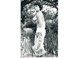 Dorothy luceys tits, hottest asian pornstars asia carrera