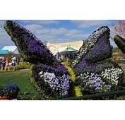 Epcot International Flower And Garden Festival Gardens