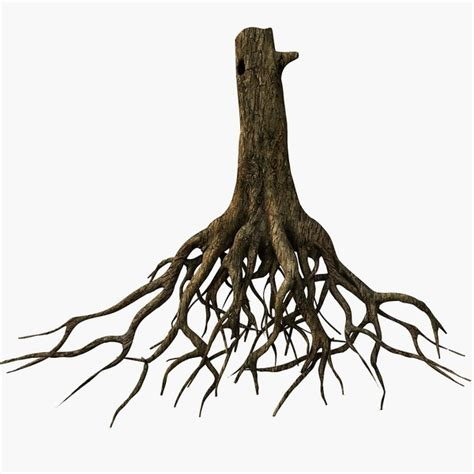 Roots Clipart tree roots 3d model clipart best clipart best