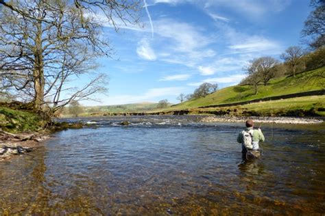 stillwater yorkies fly fishing dales