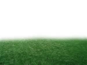 Voir l'image dans sa taille ( 700 x 466 · · 86 kB . jpeg ) Share on ... Grass
