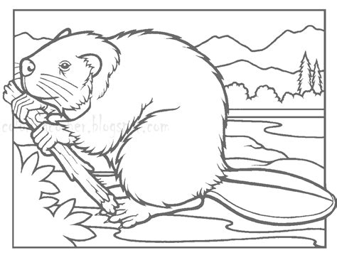 beaver coloring pages preschool beaver coloring pages