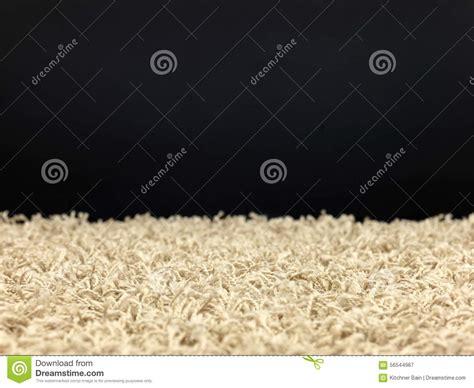 how to shoo a shag rug shag carpet stock photo image 56544967