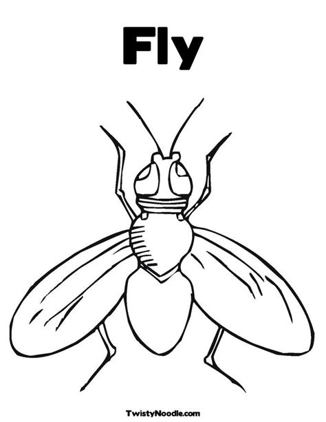Fly Colouring Flying Coloring Pages