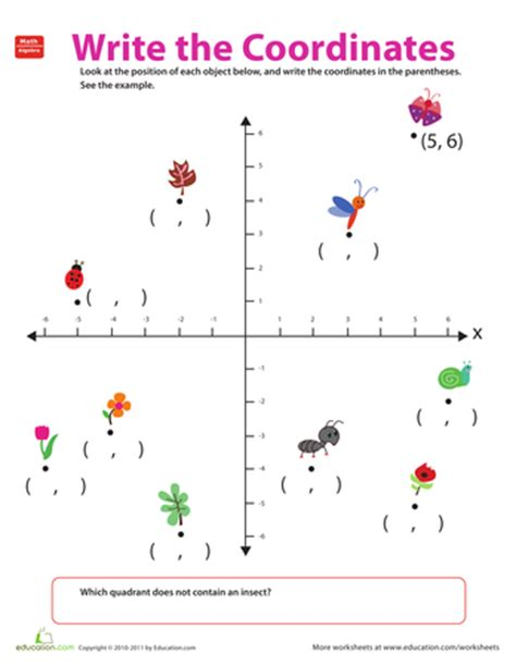 pattern variables explained patterns pairs and variables printable workbook