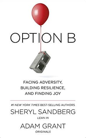 summary of option b facing adversity building resilience and finding books option b facing adversity building resilience and