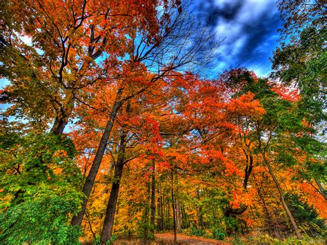 autumn colors indian summer north american weather phenomenon