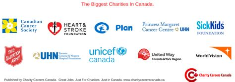 Mba Non Profit Canada by Size Matters The Non Profit Organizations In