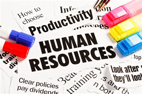 Importance And Role Of Human Resources Or Hr Department