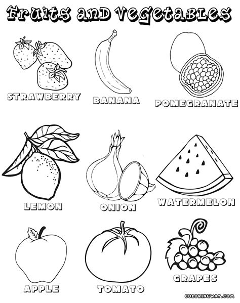 a vegan coloring book vegan coloring books by alev books fruit and vegetable coloring pages fruit and