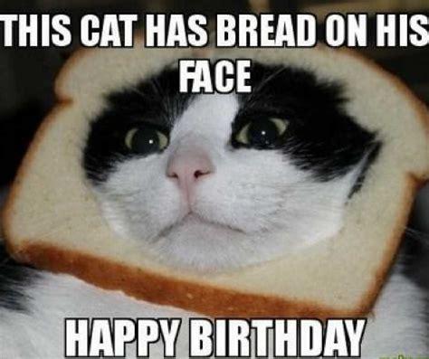 happy cat meme happy birthday meme birthday memes collection