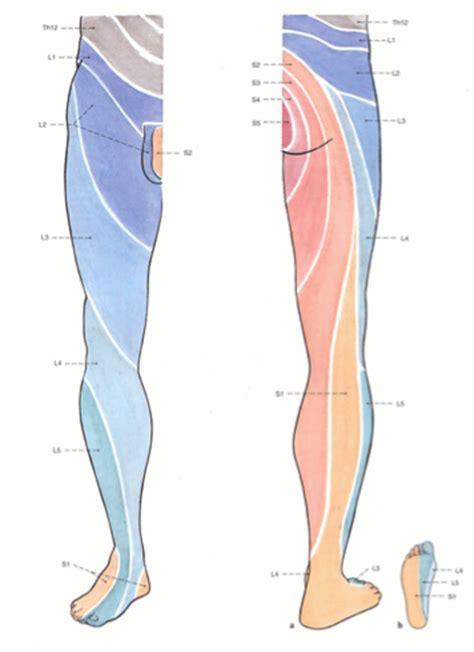 nerve pain causes nerve pain thighs sciatic nerve pain causes symptoms and treatment
