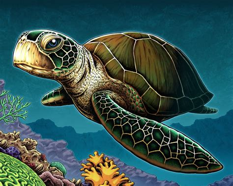 colors of the turtles sea turtle by nicholasivins on deviantart