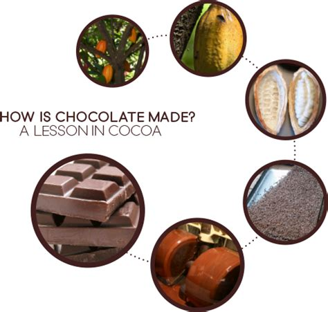 what is made of how is chocolate made a lesson in cocoa chocomaker