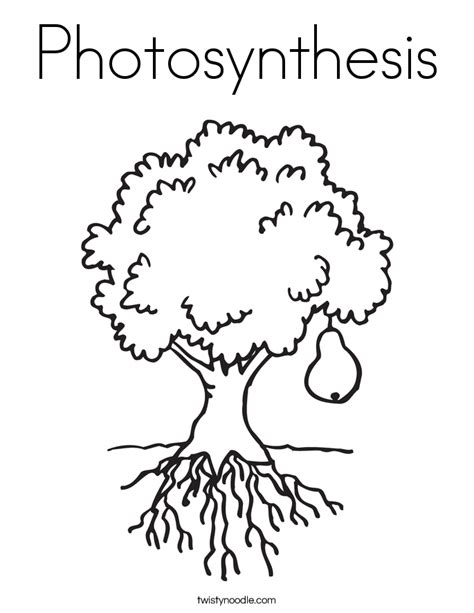 Photosynthesis Coloring Page Twisty Noodle Photosynthesis Coloring Pages