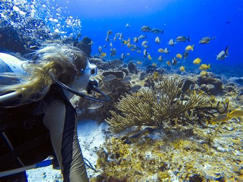 drift boat zipline scuba diving in cozumel with scubatony the blonde abroad